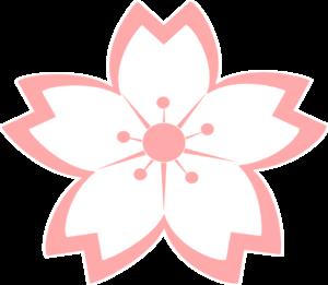 Mio Ushiyama, praticienne de shiatsu à Gouvieux (Oise)